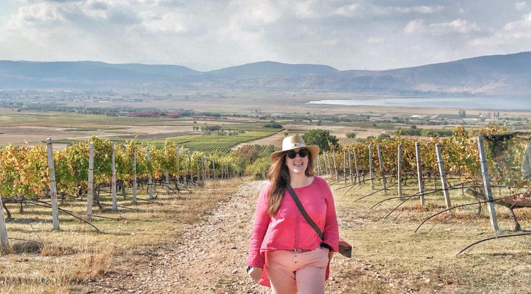 Amyndion, vinresa, Grekland, Kir-yanni, vingård