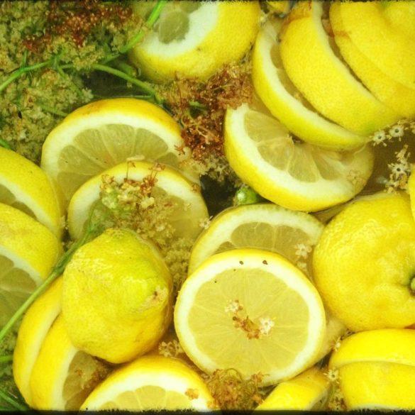 fläder, citron, nowaste, marmelad, recept